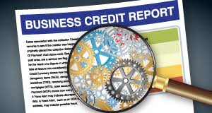 Learning the ins and outs of business credit can help you build a strong credit history for your business apart from your own.
